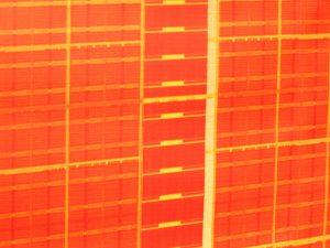 Pomarańczowa tapeta